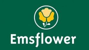 EmsflowerLogoGroen0-395b514906bf8a56fe896f1c57717c71